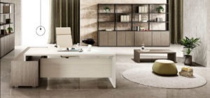 1.executive desk_office furniture (8)