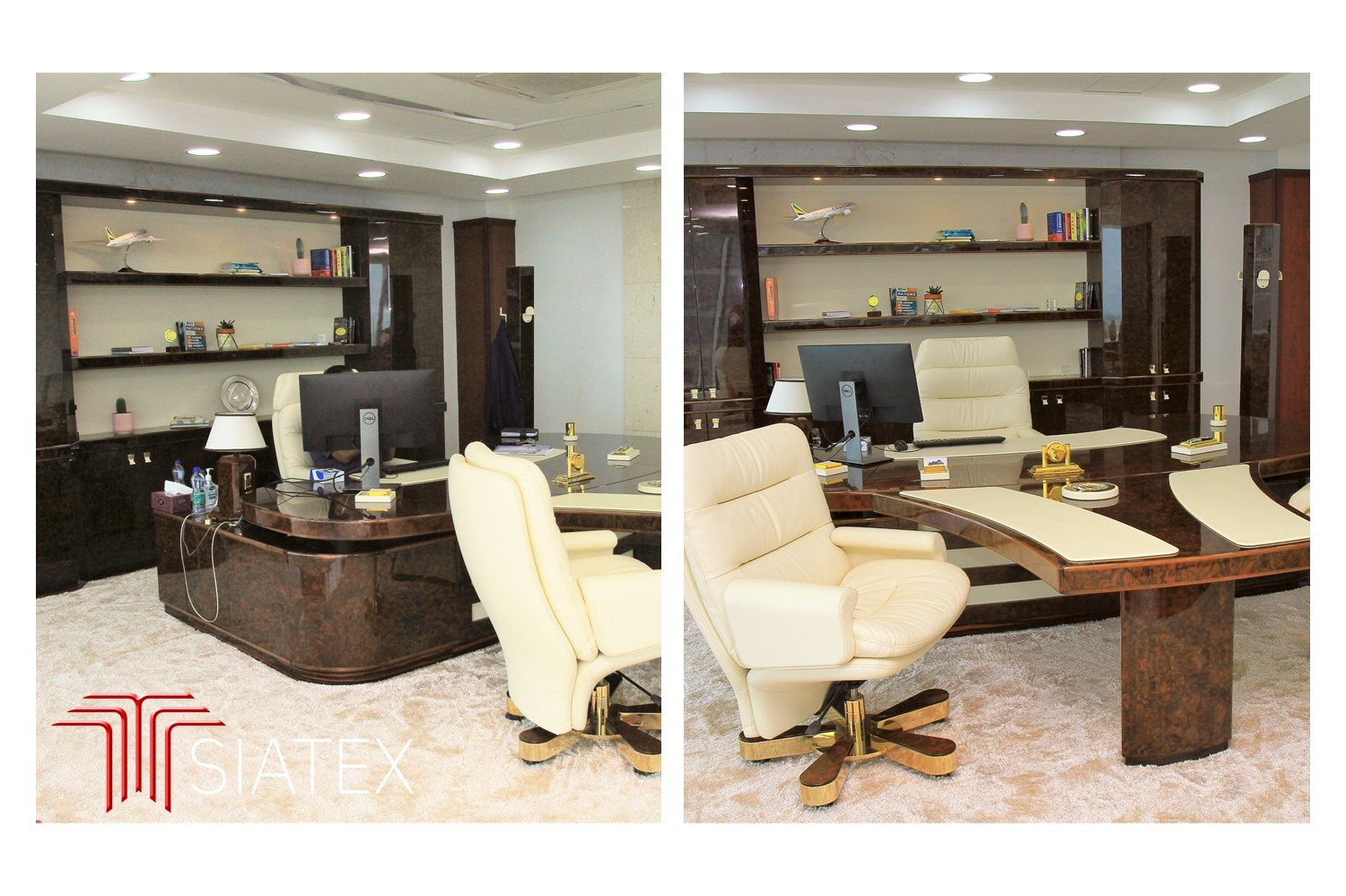 3.office furniture project_luxury ceo desk chairs and bookcase (2)